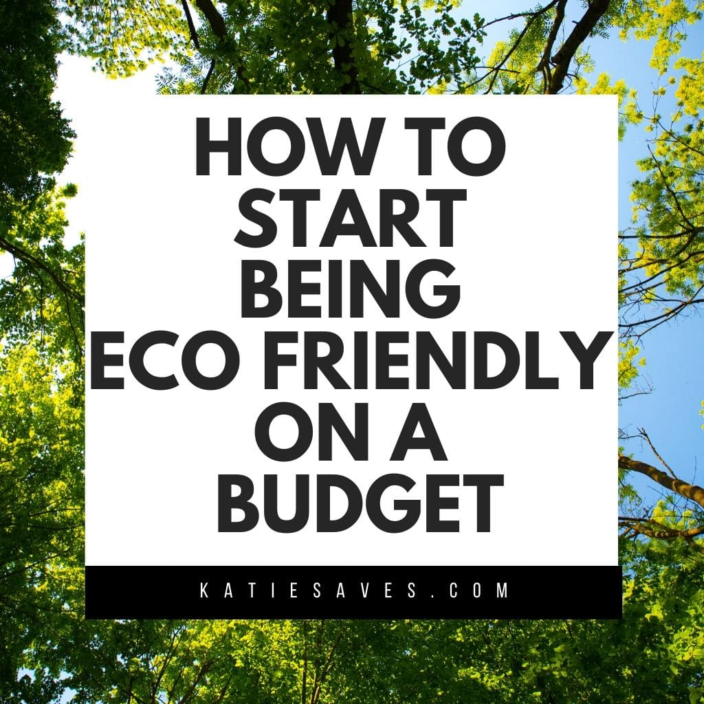 START being eco friendly on a budget